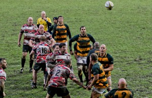 GLOUCESTER game Photography c2017 (117 of 199)
